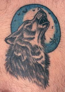 oldwolf1.jpg